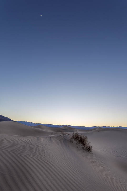 Art Poster featuring the photograph Moon In The Desert by Jon Glaser