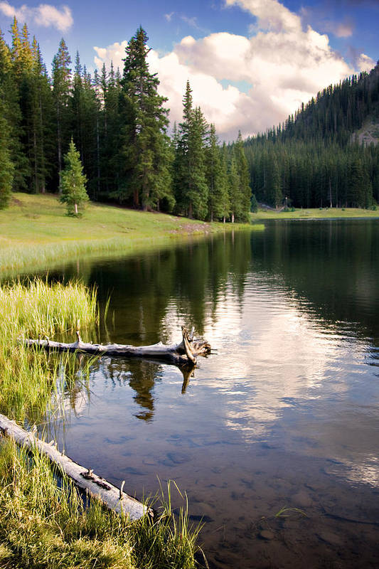 Aspen Poster featuring the photograph Poage Lake by Lana Trussell
