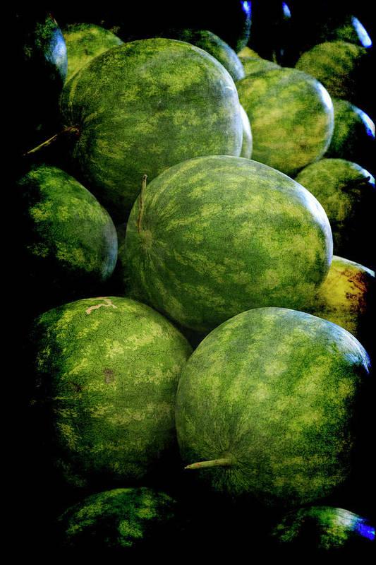 Renaissance Poster featuring the photograph Renaissance Green Watermelon by Jennifer Wright