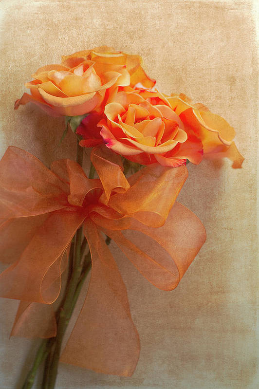 Roses Poster featuring the photograph Rose Bouquet by Rebecca Cozart