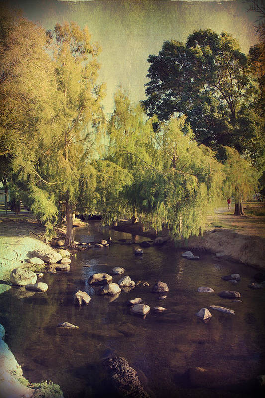 Landscapes Poster featuring the photograph Stepping Stones To My Heart by Laurie Search