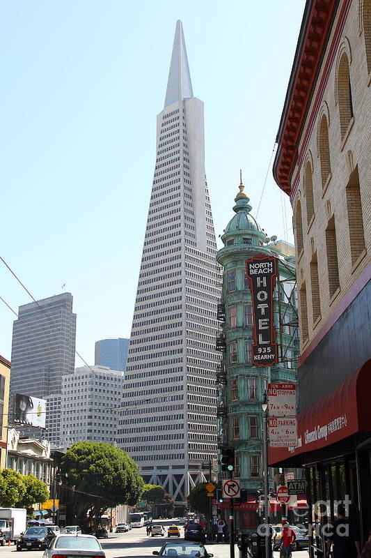 San Francisco Poster featuring the photograph Transamerica Pyramid Through North Beach San Francisco . 7434 by Wingsdomain Art and Photography