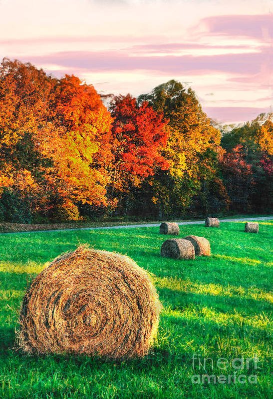 North Carolina Poster featuring the photograph Blue Ridge - Fall Colors Autumn Colorful Trees And Hay Bales II by Dan Carmichael