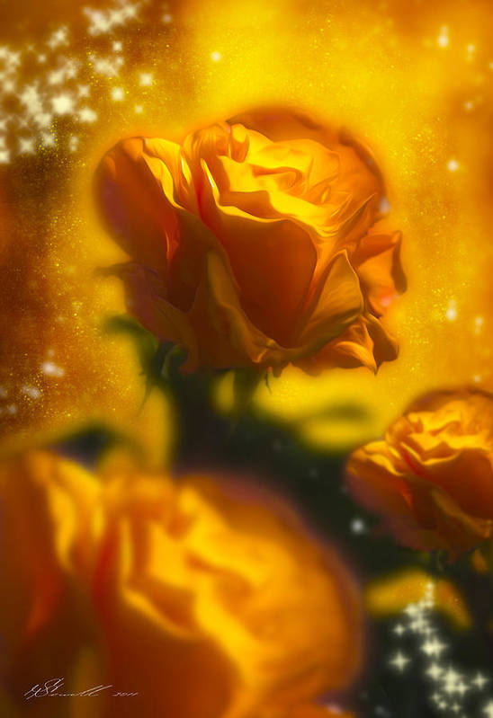 Anniversary Poster featuring the photograph Golden Roses by Svetlana Sewell