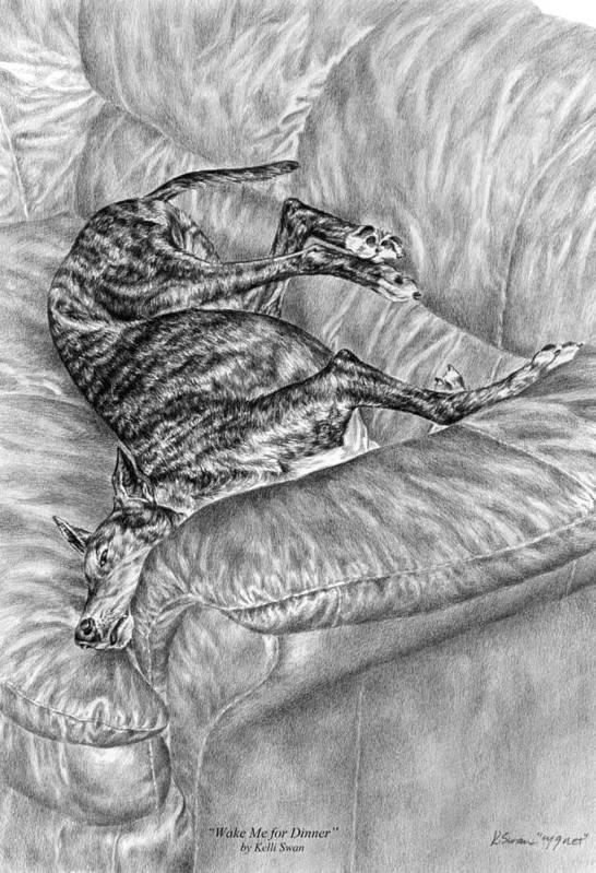 Greyhound Poster featuring the drawing Wake Me For Dinner - Greyhound Dog Art Print by Kelli Swan