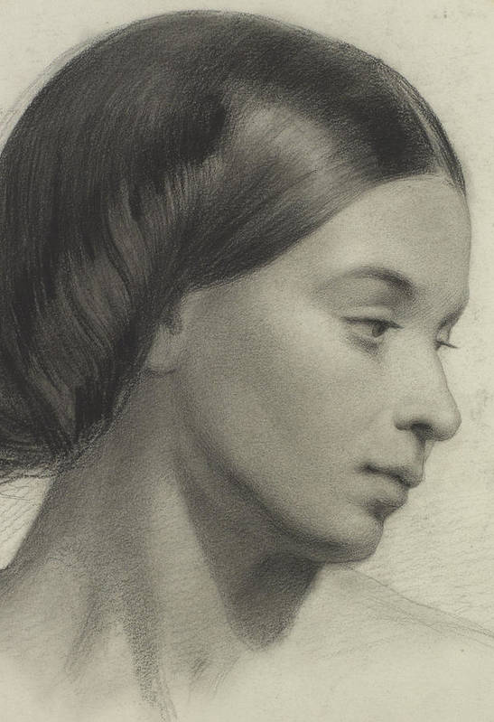 Female; Portrait; Drawing; Oval; Hairstyle; Victorian; Serene; Serentity; Innocence; Demure; Head Poster featuring the painting Head Of A Girl by Anonymous