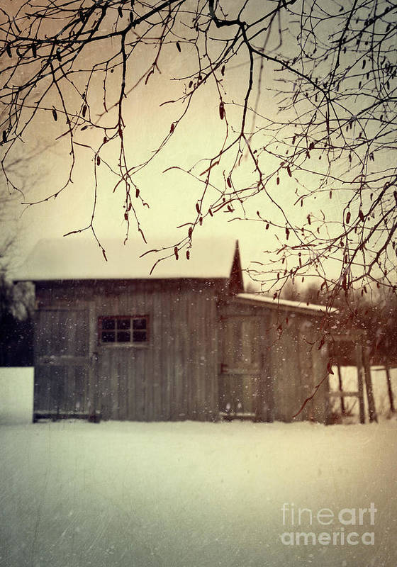 Atmospheric Poster featuring the photograph Old Shed In Wintertime by Sandra Cunningham