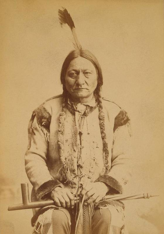 History Poster featuring the photograph Sitting Bull 1831-1890, Lakota Sioux by Everett