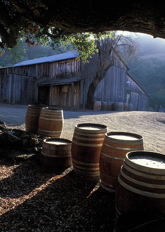Barns Poster featuring the photograph Barn And Wine Barrels by Kathy Yates