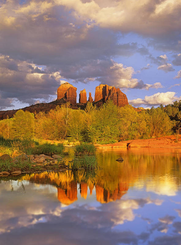 00175721 Poster featuring the photograph Cathedral Rock Reflected In Oak Creek by Tim Fitzharris