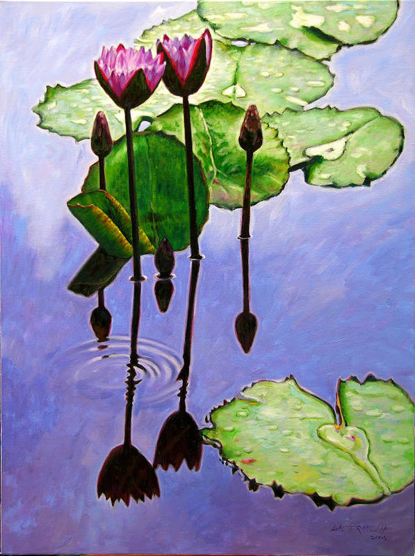 Rose Colored Water Lilies After A Morning Shower With Dark Reflections And Water Ripple. Poster featuring the painting After The Shower by John Lautermilch