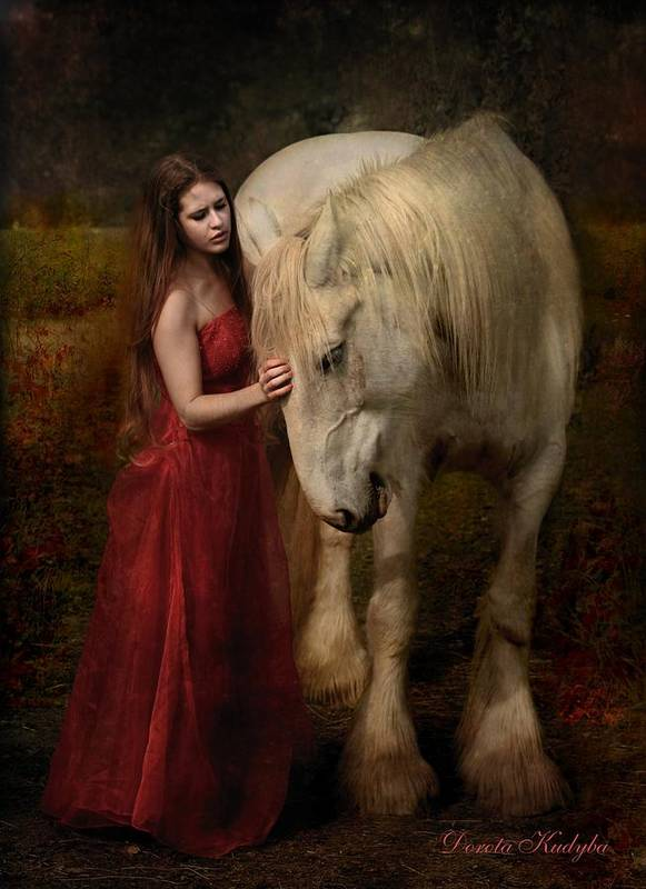 Horse Poster featuring the photograph Lady With An Ermine by Dorota Kudyba