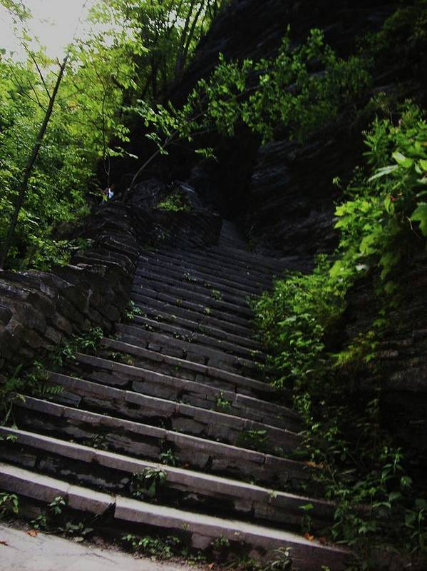 Watkins Glen Poster featuring the photograph Stairway To Watkins 2 by InTheSane DotCom