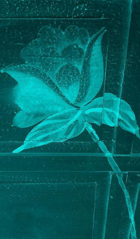 Flowers Poster featuring the photograph Aquamarine Negative Wood Flower by Rob Hans