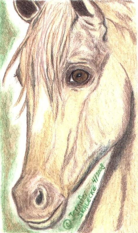 Horse Poster featuring the drawing Flirt by Jennifer Skalecke