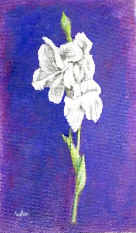 Poster featuring the painting Gladiolus 2 by Usha Shantharam