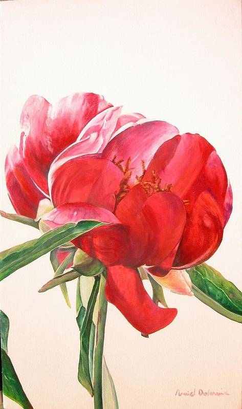 Floral Painting Poster featuring the painting Pivoine 2 by Muriel Dolemieux