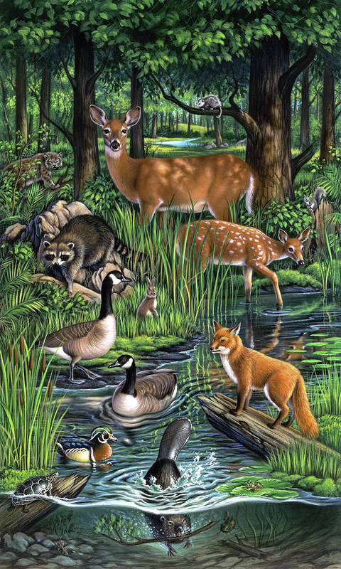 Animals Poster featuring the painting Woodland by Jerry LoFaro