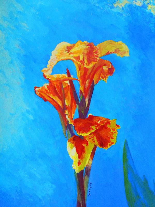 Canna Poster featuring the painting Colorful Canna by Margaret Saheed