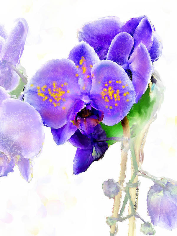Floral Paintings Poster featuring the painting Floral Series - Orchid by Moon Stumpp