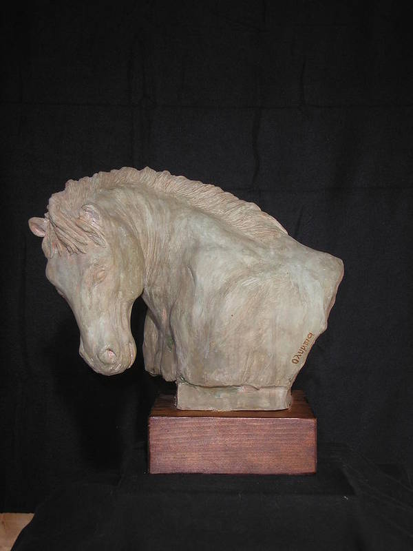 Sculpture Sculpture Horse Sculpture Animals Sculpture Busts Sculpture Close Up Sculpture Clay Sculpture Sculpture Wildlife Sculpture Realistic Sculpture Head Sculpture Face  Poster featuring the sculpture Horse by Olympia Letsiou