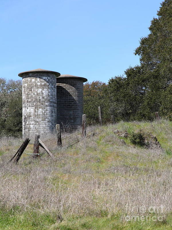 Sonoma Poster featuring the photograph Jack London Ranch Silos 5d22146 by Wingsdomain Art and Photography