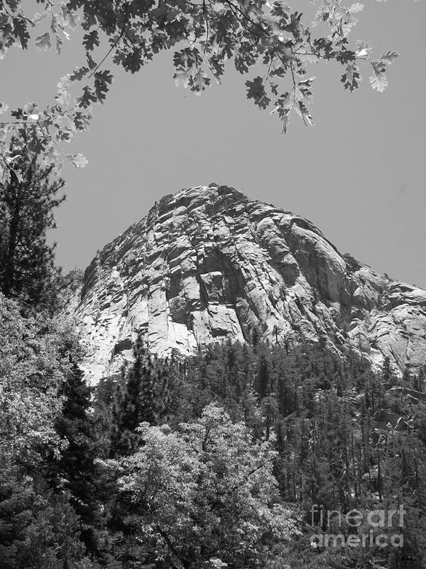 lily Rock Poster featuring the photograph Lily Rock In Black And White by Glenn McCarthy Art and Photography