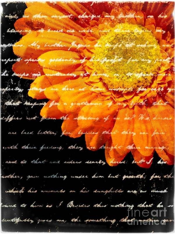 Flower Poster featuring the photograph Love Letters by Edward Fielding