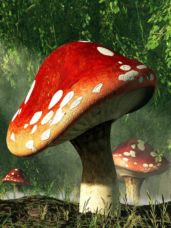 Mushroom Poster featuring the digital art Mystic Mushroom by Daniel Eskridge