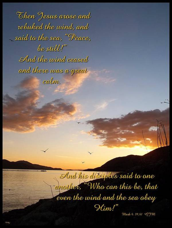 peace Be Still Poster featuring the photograph Peace Be Still by Glenn McCarthy Art and Photography