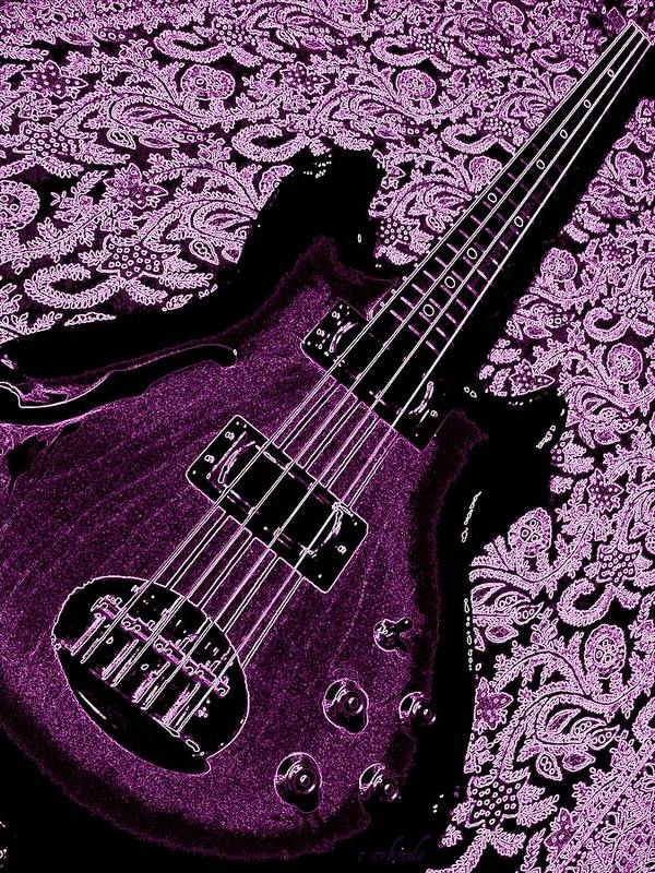 Bass Poster featuring the photograph Purple Bass by Chris Berry