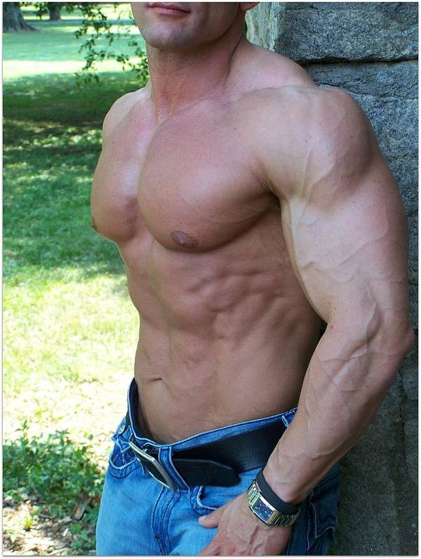 Pecs Poster featuring the photograph The Bodybuilder Soft Touch by Jake Hartz