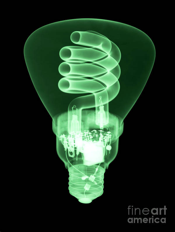 Xray Poster featuring the photograph Energy Efficient Light Bulb by Ted Kinsman