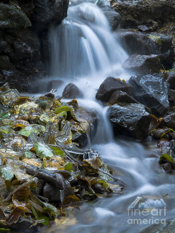 Nature Poster featuring the photograph Waterfall by Odon Czintos