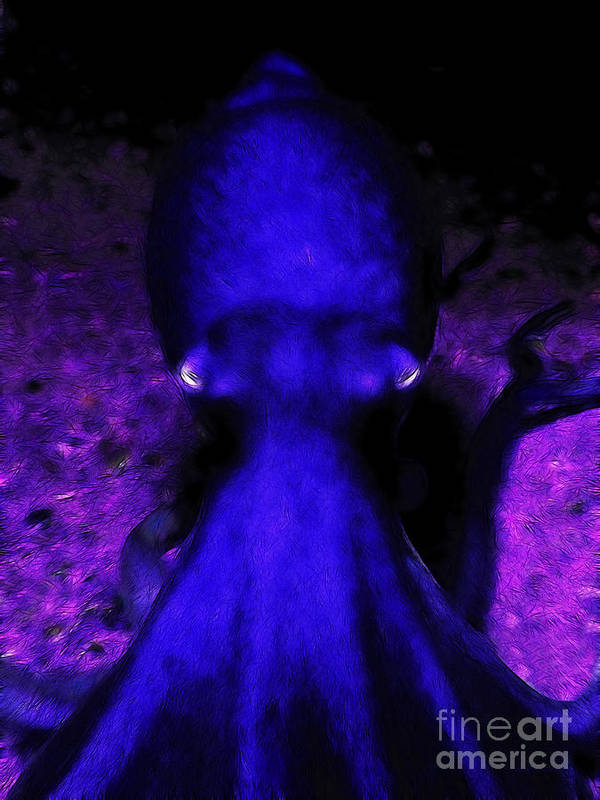 Octopus Poster featuring the photograph Creatures Of The Deep - The Octopus - V4 - Blue by Wingsdomain Art and Photography