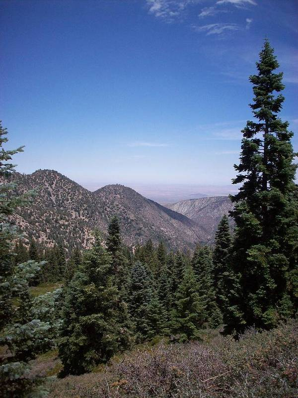 Angeles National Forest Poster featuring the photograph Mountain View by Steve Huang