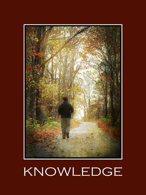 Knowledge Poster featuring the mixed media Knowledge Inspirational Motivational Poster Art by Christina Rollo