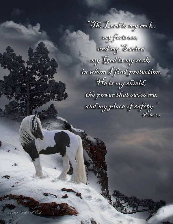 Horse Poster featuring the digital art The Rock With Verse by Terry Kirkland Cook