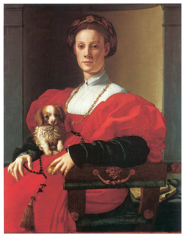 Jacopo Pontormo Poster featuring the painting Lady In A Red Dress by Jacopo Pontormo