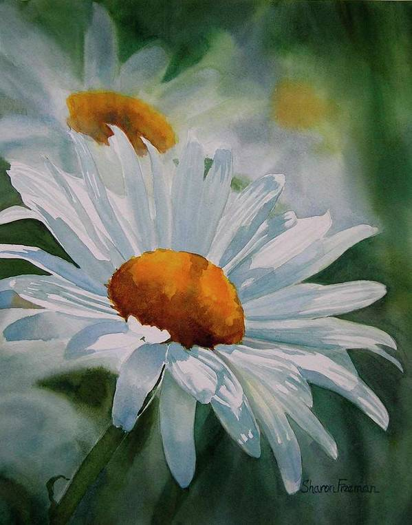 White Daisies Poster featuring the painting White Daisies by Sharon Freeman