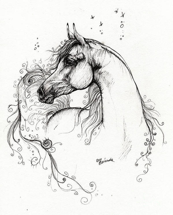 Fairytale Poster featuring the drawing Arabian Horse Drawing 8 by Angel Tarantella