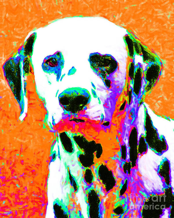 Animal Poster featuring the photograph Dalmation Dog 20130125v2 by Wingsdomain Art and Photography