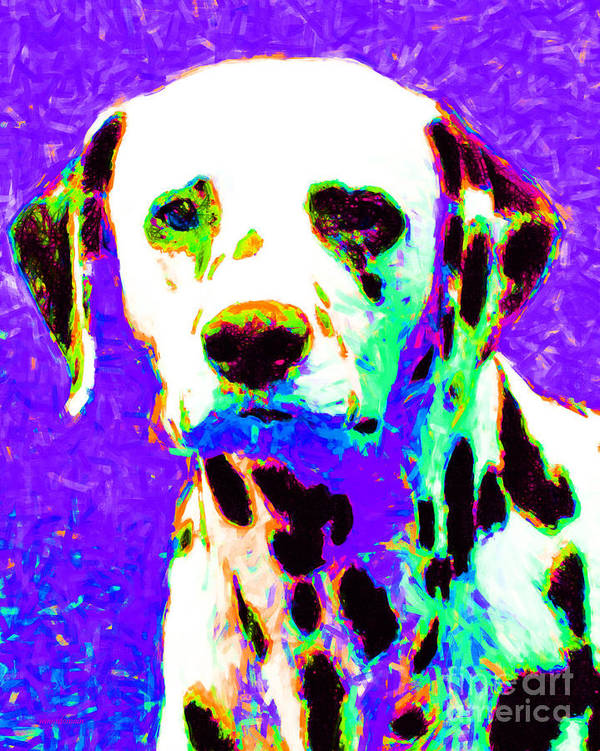 Animal Poster featuring the photograph Dalmation Dog 20130125v4 by Wingsdomain Art and Photography