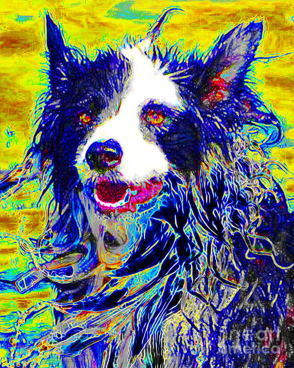 Animal Poster featuring the photograph Sheep Dog 20130125v1 by Wingsdomain Art and Photography
