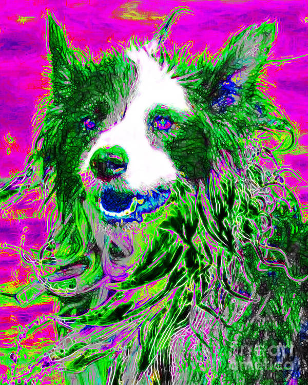 Animal Poster featuring the photograph Sheep Dog 20130125v2 by Wingsdomain Art and Photography