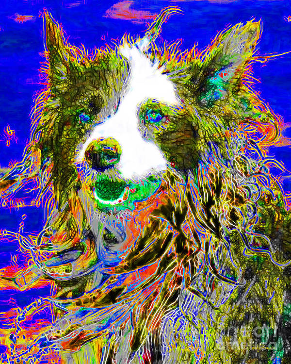 Animal Poster featuring the photograph Sheep Dog 20130125v3 by Wingsdomain Art and Photography