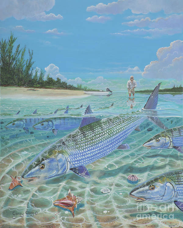 Bonefish Poster featuring the painting Tailing Bonefish In003 by Carey Chen