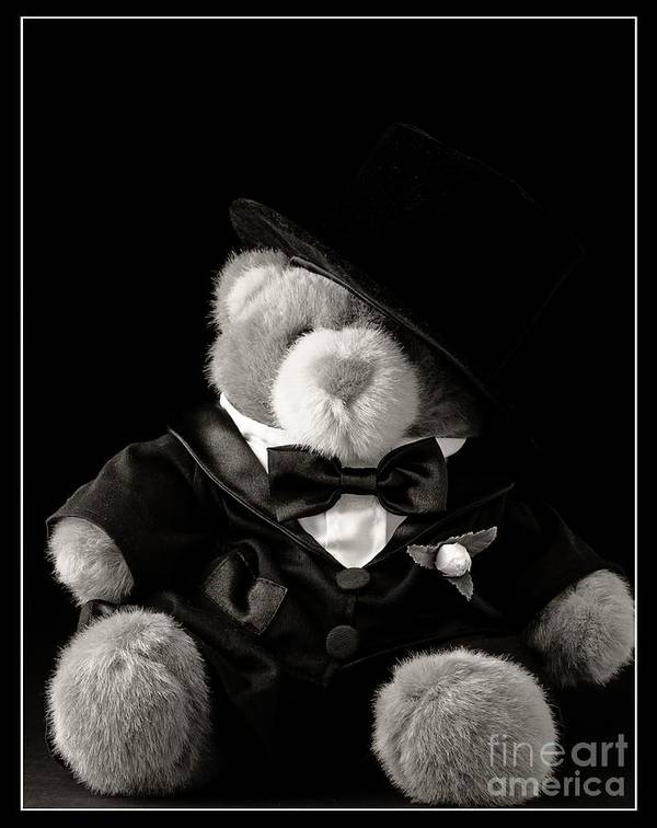Groom Poster featuring the photograph Teddy Bear Groom by Edward Fielding
