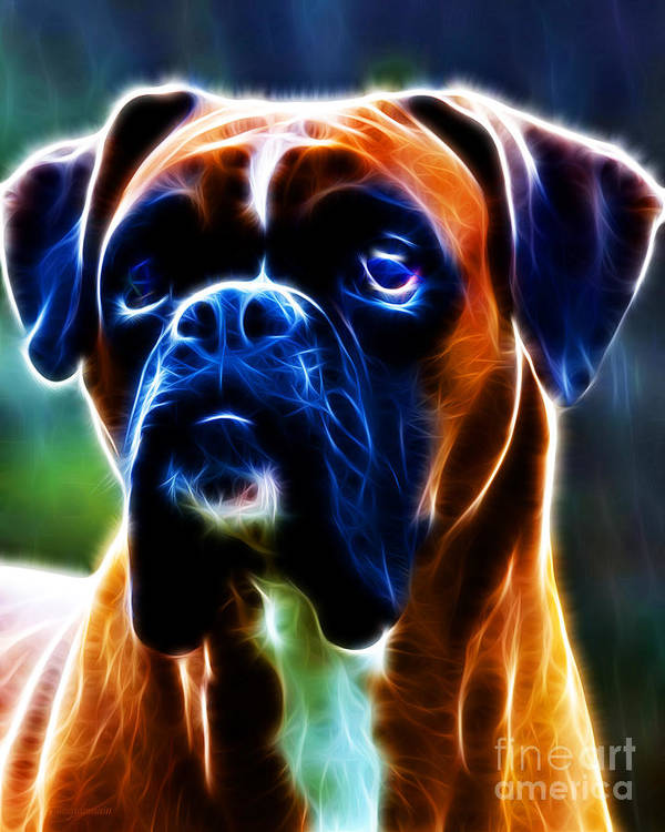 Animal Poster featuring the photograph The Boxer - Electric by Wingsdomain Art and Photography