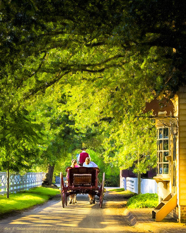 Williamsburg Poster featuring the photograph Woodland Ride - Colonial Williamsburg by Mark E Tisdale